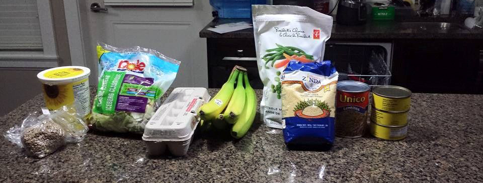 Photo of the food that Annie Ohana bought for the 2015 Welfare Food Challenge