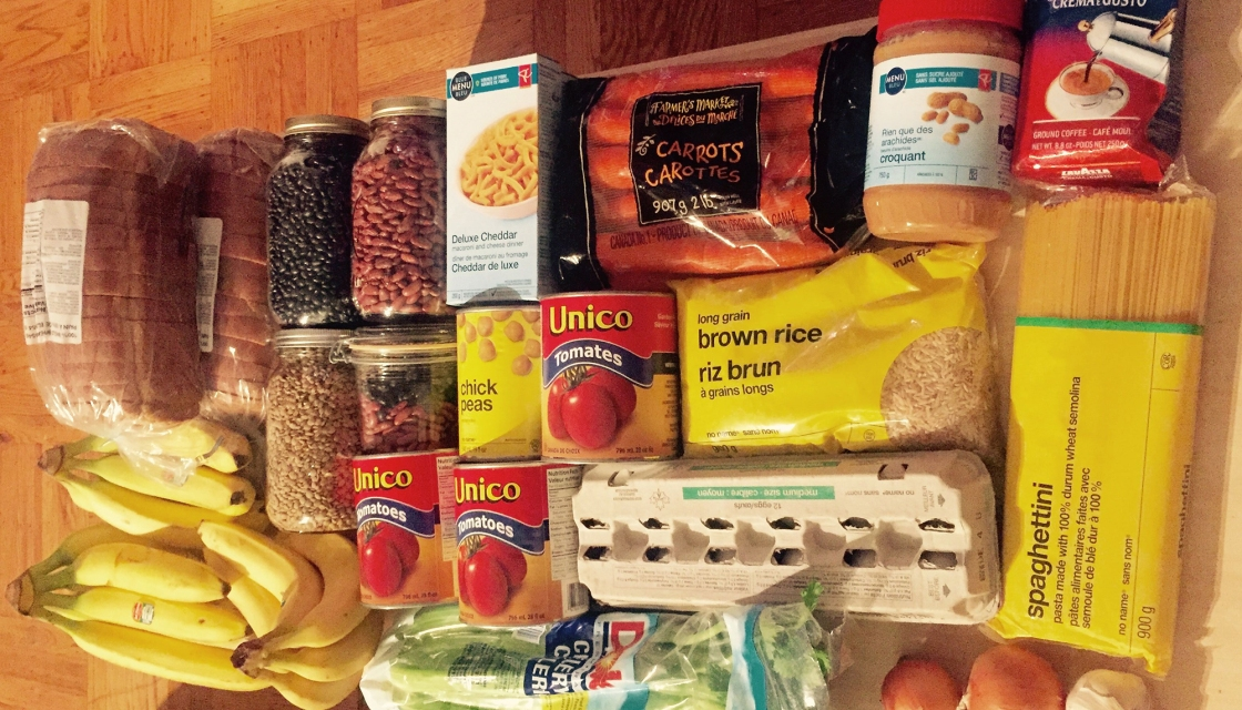 Food bought by Brigit King and Colby for the 2015 Welfare Food Challenge