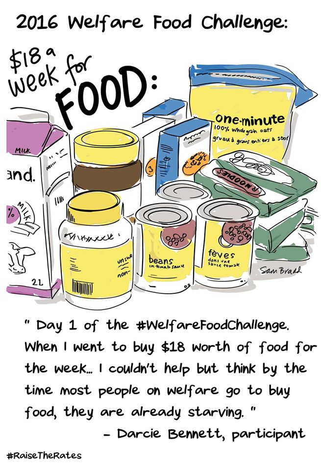 Illustration of Welfare Food Challenge groceries by Sam Bradd